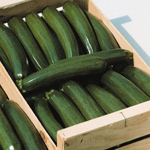 Courgette Seeds for courgettes recipes,courgette growing