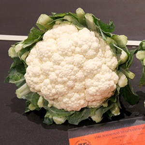 Cauliflowers Summer and Autumn
