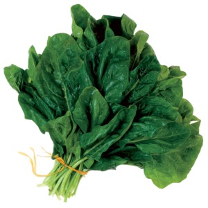 Spinach Perpetual Leaf Beet Seeds