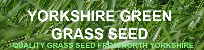 Yorkshire Green Grass Seed