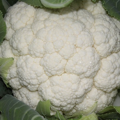 Cauliflower Skywalker F.1 Sybrid Seeds