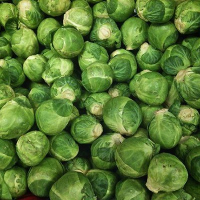 Brussels Sprout Marti F.1 Hybrid Seeds