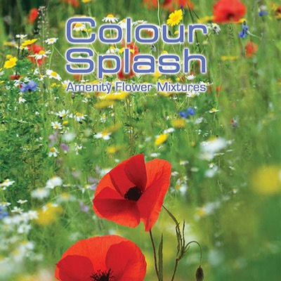 Colour Splash Amenity Flower Seed